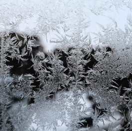 Winter picture on the glass