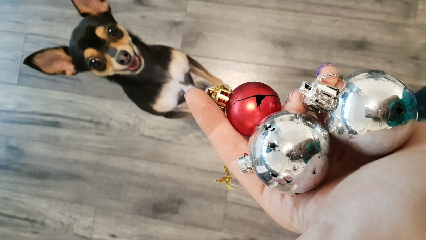 Decoration process /Can you decorate a Christmas tree if you own a dog