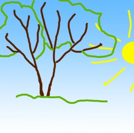 Sun and Trees